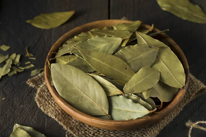 Health Herbs You Should Add To Your Cooking Ingredients - Health Perfecto